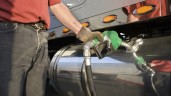 Road fuel mix to increase biofuel levels from January