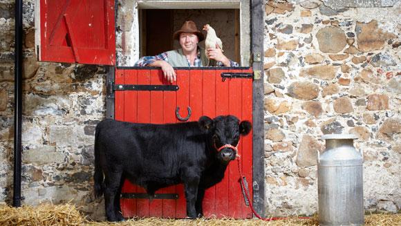 Archie---Smallest-Bull-main_tcm25-14871
