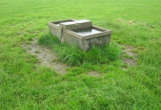How much will your livestock cost you in water charges ?