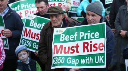 'Factories took advantage of high beef supplies last year and played havoc'