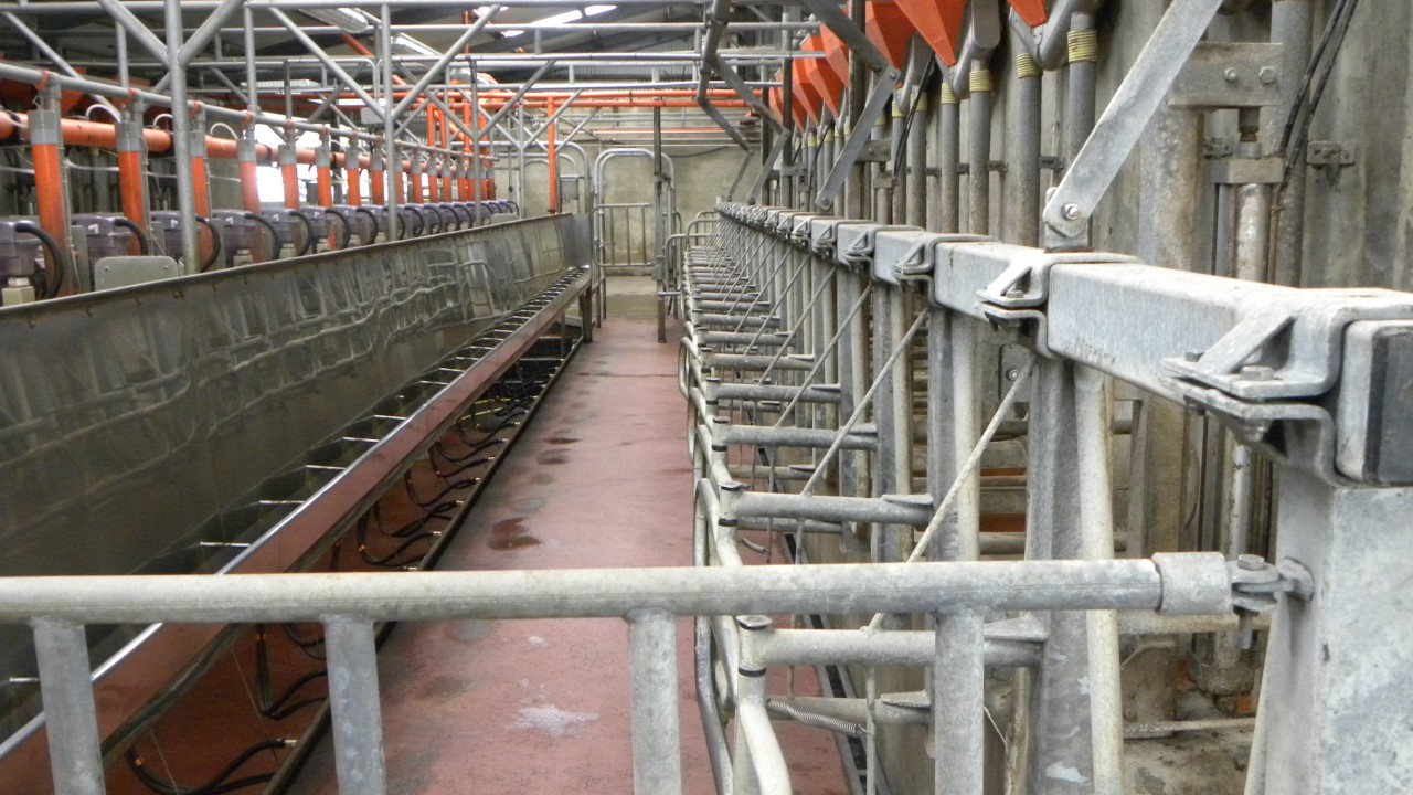 Dairy farmers encouraged to manage production in February and March