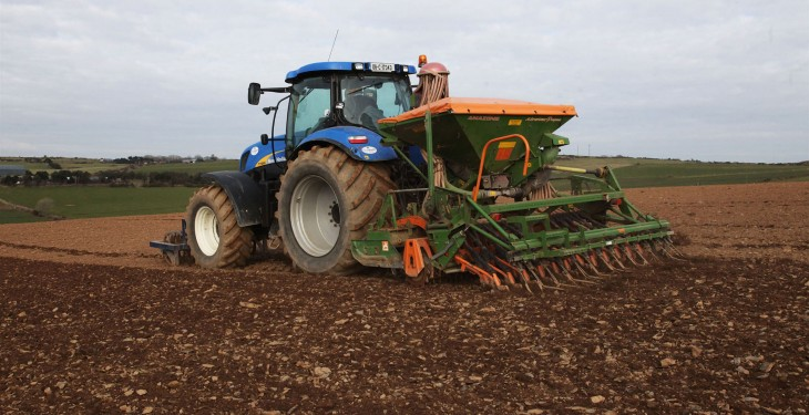 Tillage farmers may have planted more winter barley than ever before