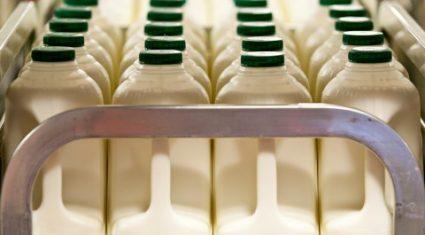 UK milk processor introduces milk 'price floor' at 23p/L