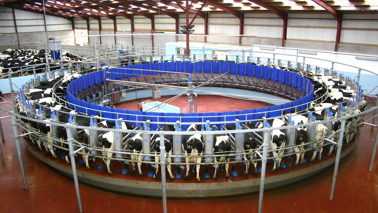'Five years' experience essential before going into a share farming agreement'
