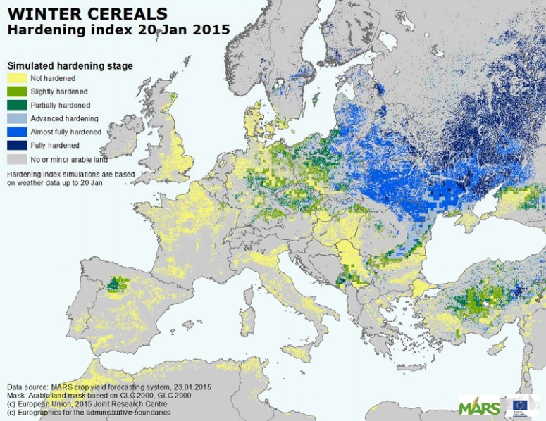 EU winter cereals
