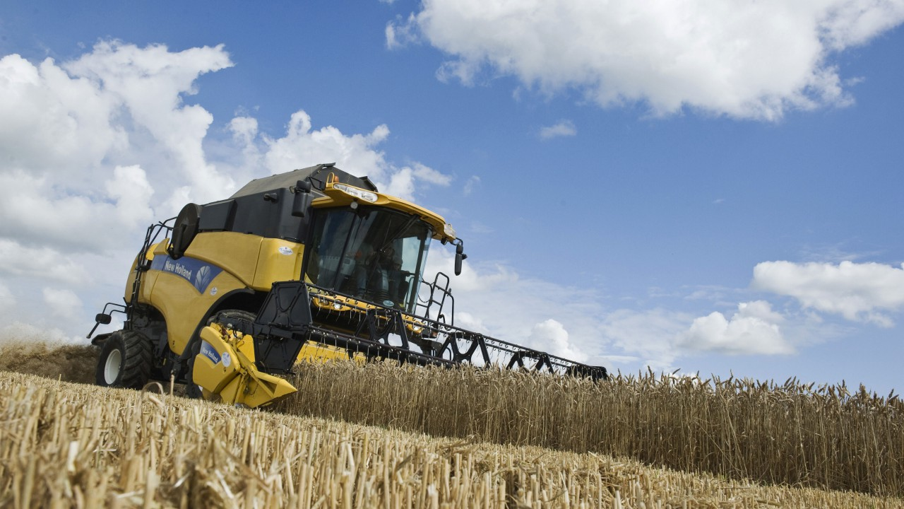 Provisional 2015 estimates show dramatic reduction in winter wheat production
