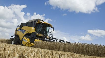 Russian grain production may fall 40% if weather takes its toll