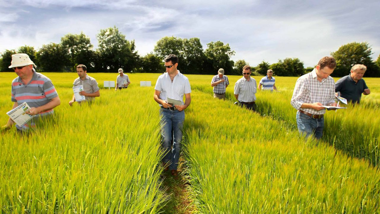 Three new tillage demonstration farms planned by Teagasc