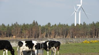 'Resistance to wind turbines is large and growing'