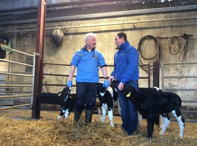 How one farmer went from treating 20% of calves for pneumonia to none