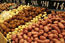 Growers urged to cut back their potato acreage this year