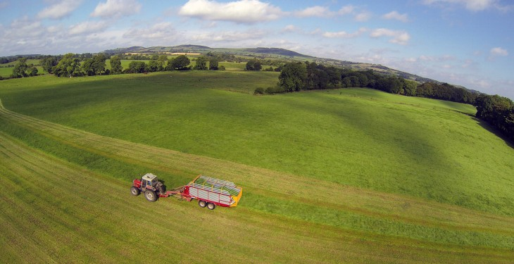 Commission proposes ban on pesticides on Ecological Focus Areas