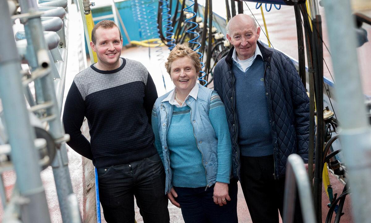 Top dairy farm to open for Teagasc farm walk