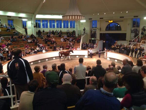 Coveney launches report for the sport horse industry
