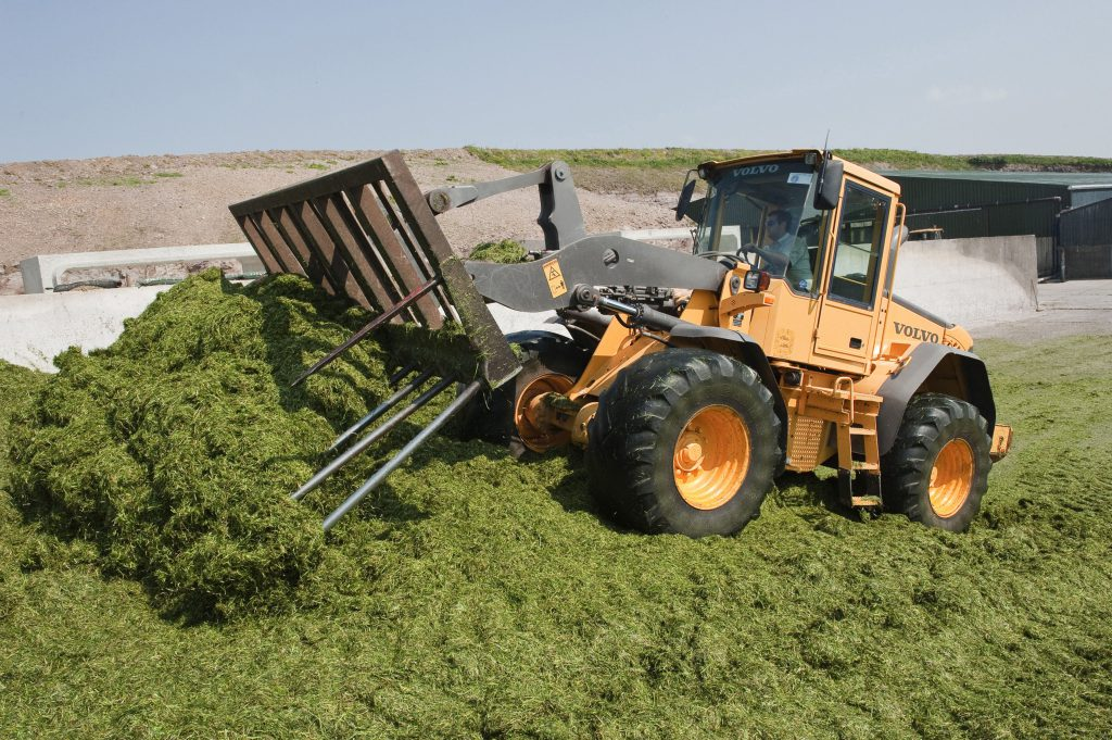 Pay silage
