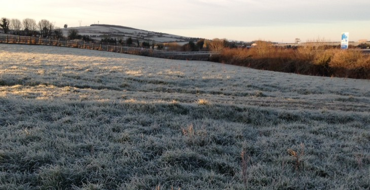 Some frost to linger over weekend – Met Eireann
