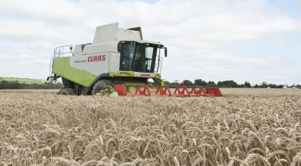New greening measures will act to reduce EU grain output by 8%
