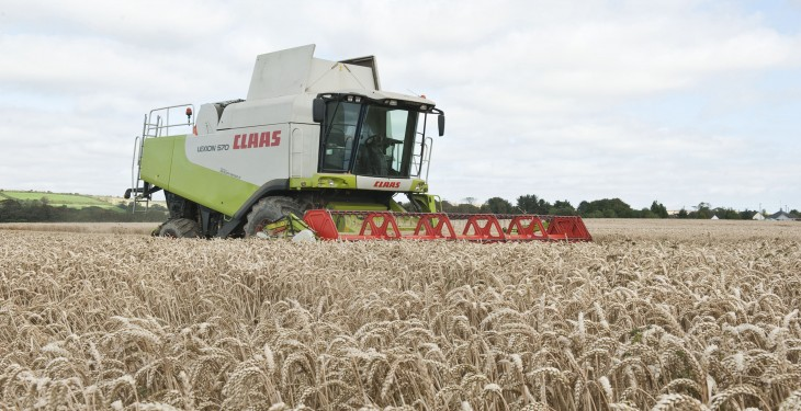 Apply P and K with first application of N to winter wheat – Teagasc