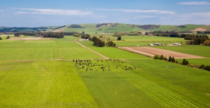 See pictures of a massive 2,900 acre New Zealand farm that's for sale