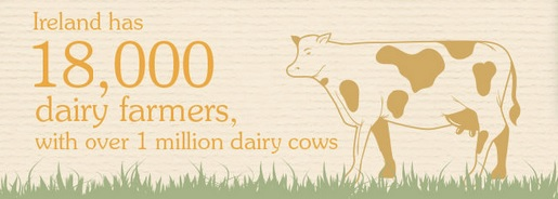 Number of Dairy farmers