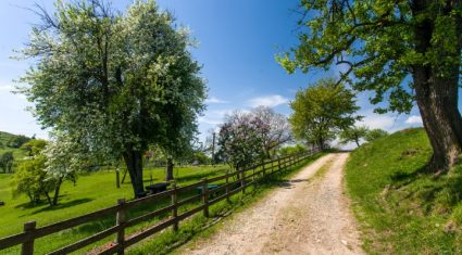 Rural people less confident in the economy
