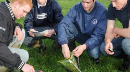 CAO applications for agricultural courses slump