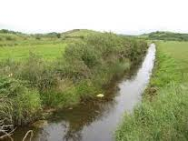 All you need to know about watercourses in GLAS