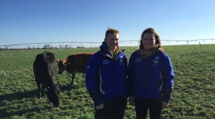 UCD students calving 600 cows in temperatures of -16