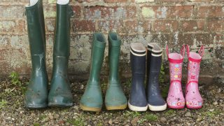Calls for more supports to encourage women to take a central role in farming