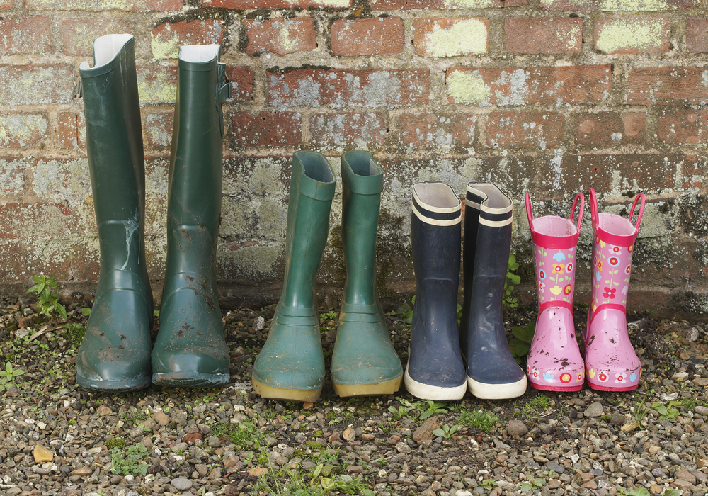 wellies family