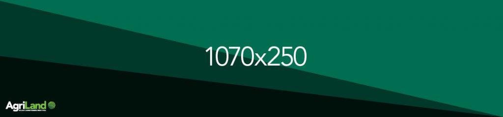 1070x250