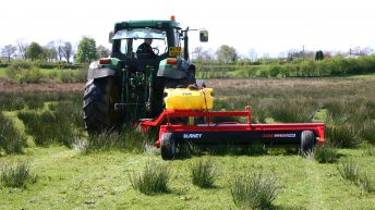 Dealing with the scourge of rushes in grassland