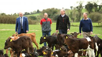 'We need to work collectively to improve our farm safety record'- Coveney