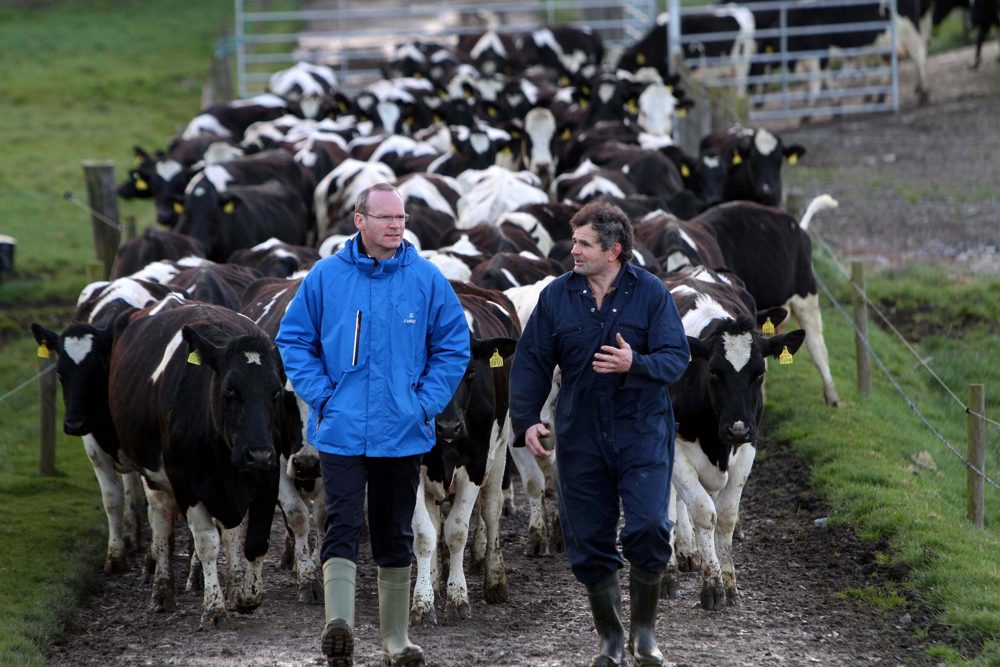 why do dairy farmers deserve a christmas bonus while others get