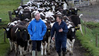 Coveney predicts milk price recovery for 2016 – dairy incomes to fall 40% in 2015