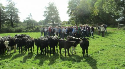Discussion Groups: 5,000 dairy and 7,000 beef farmers to be accepted this year