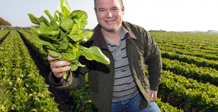 Dublin grower to provide first season spinach this year
