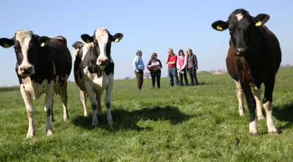 Farm safety must be a top priority for farmers – Ulster Bank