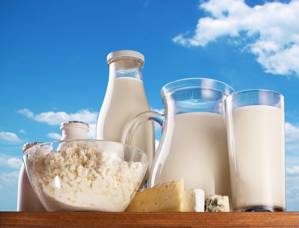 thesis in antibiotic residues in milk Title of thesis: detection of some food safety hazards in milk and some   dairy   in 2435 milk samples and found that 29% containing antibiotic residues.