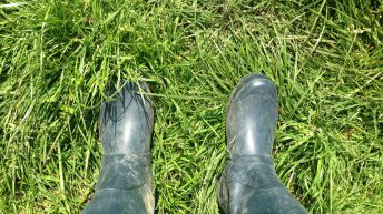 Essential for the Ploughing – a good pair of wellies