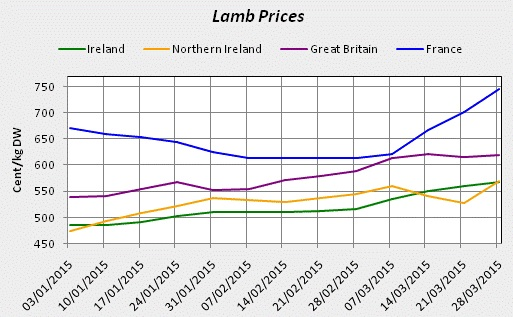 lamb price