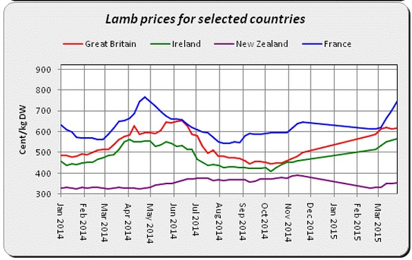 lamb prices 2