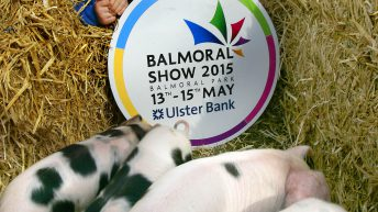 Going to Balmoral? Here's how to get there and what to see at the show
