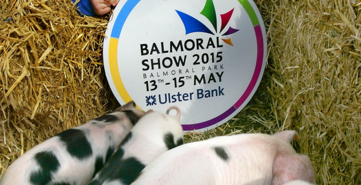 Four-day Balmoral Show on the cards from 2017