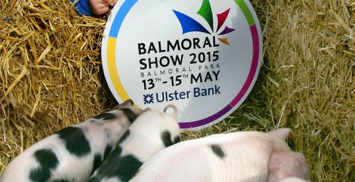 Video: Day 2 at Balmoral Show