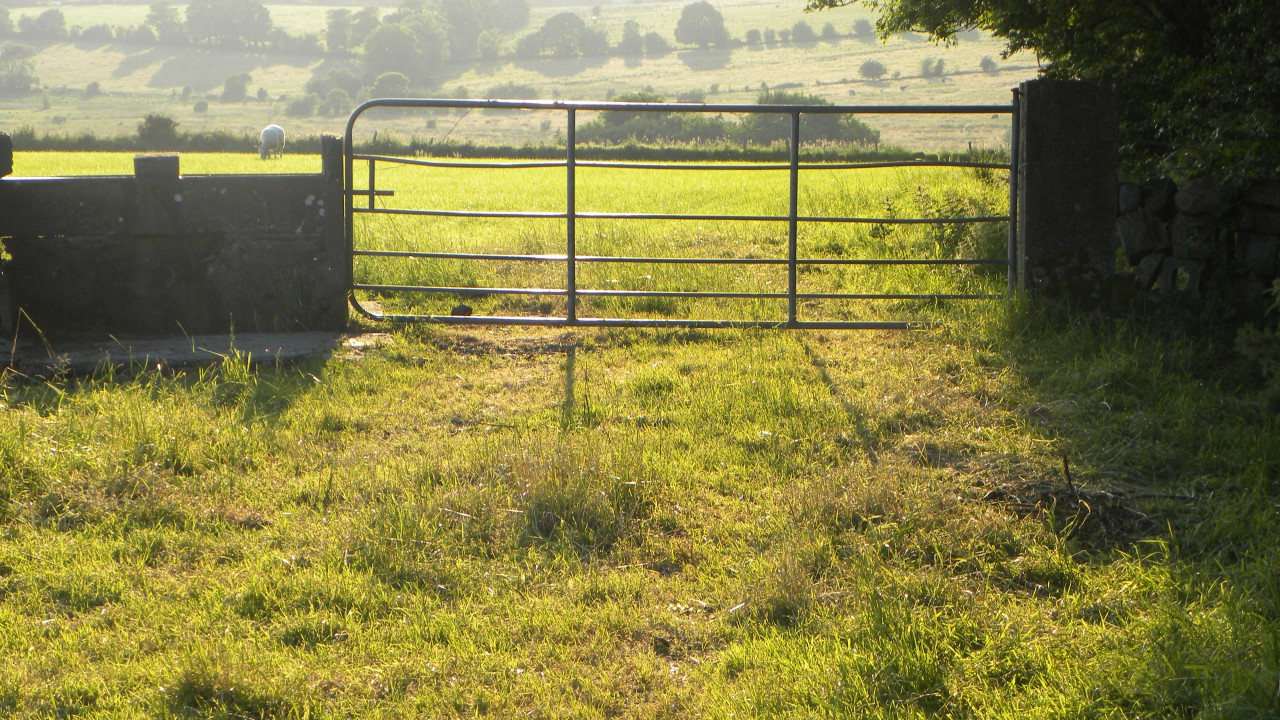 Thousands of farmers left without GLAS planners 3 weeks from deadline