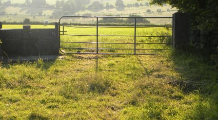 Grass advice: Closing up grass for spring 2016 has begun on some farms