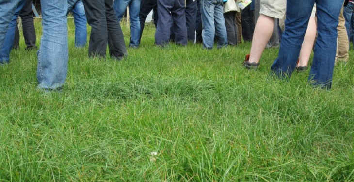 Farmers won't know until August if they have GLAS approval