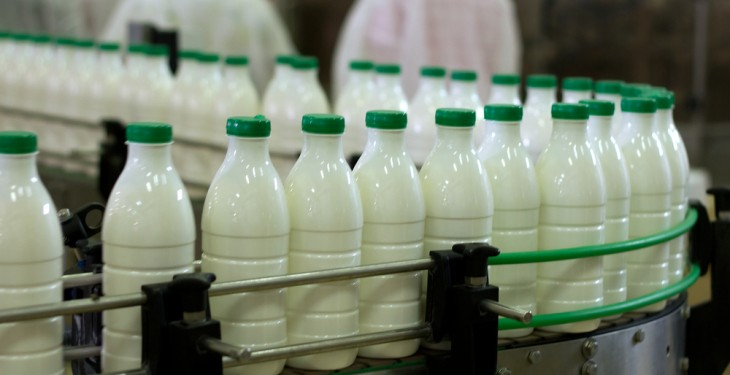 How much of Europe's milk does Ireland produce and drink?