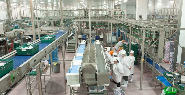 Moy Park increases production to 5 million chickens per week